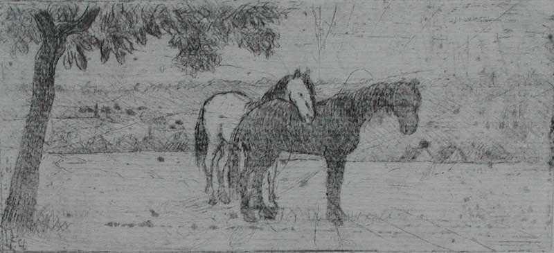 Two Horses in a Field - Félix Pissarro (1874 - 1897)