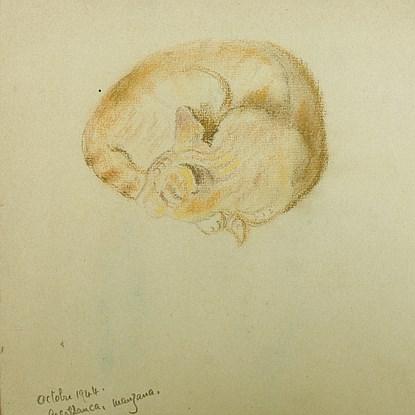 Sleeping Cat - Georges Manzana Pissarro (1871 - 1961)