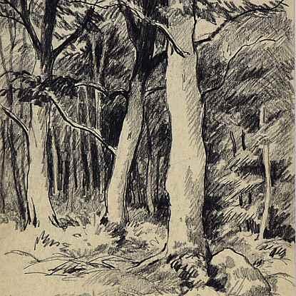 Vue d'une Forêt - Paulémile Pissarro (1884 - 1972)