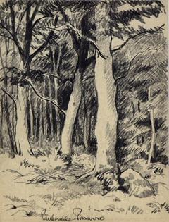 Paulémile Pissarro - Vue d'une Forêt