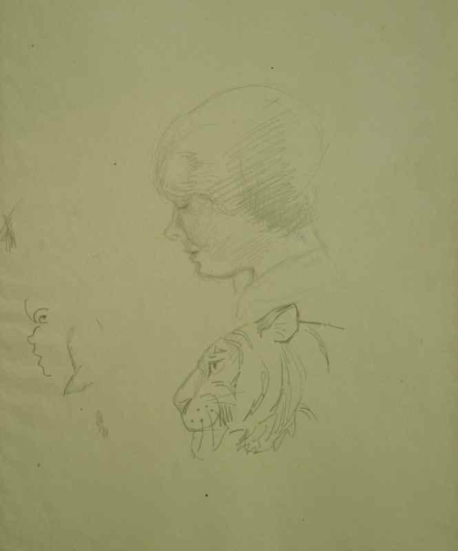 A Study of Human Head and Tiger - Orovida Pissarro (1893 - 1968)