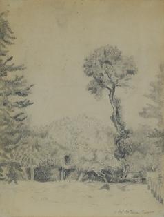 Félix Pissarro - Landscape with Trees