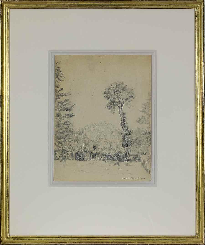 Landscape with Trees - Félix Pissarro (1874 - 1897)