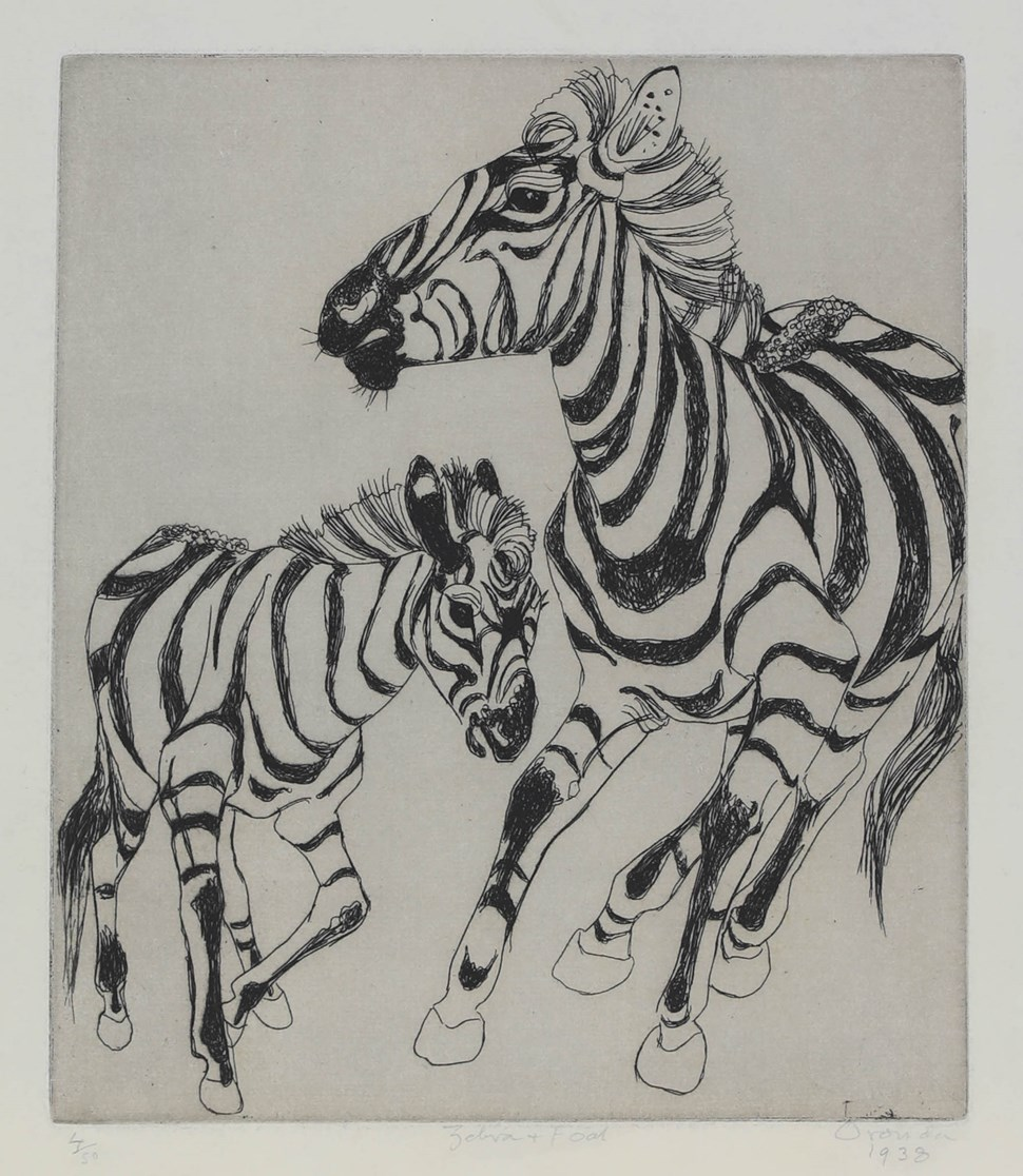 Zebra and Foal - Orovida Pissarro (1893 - 1968)