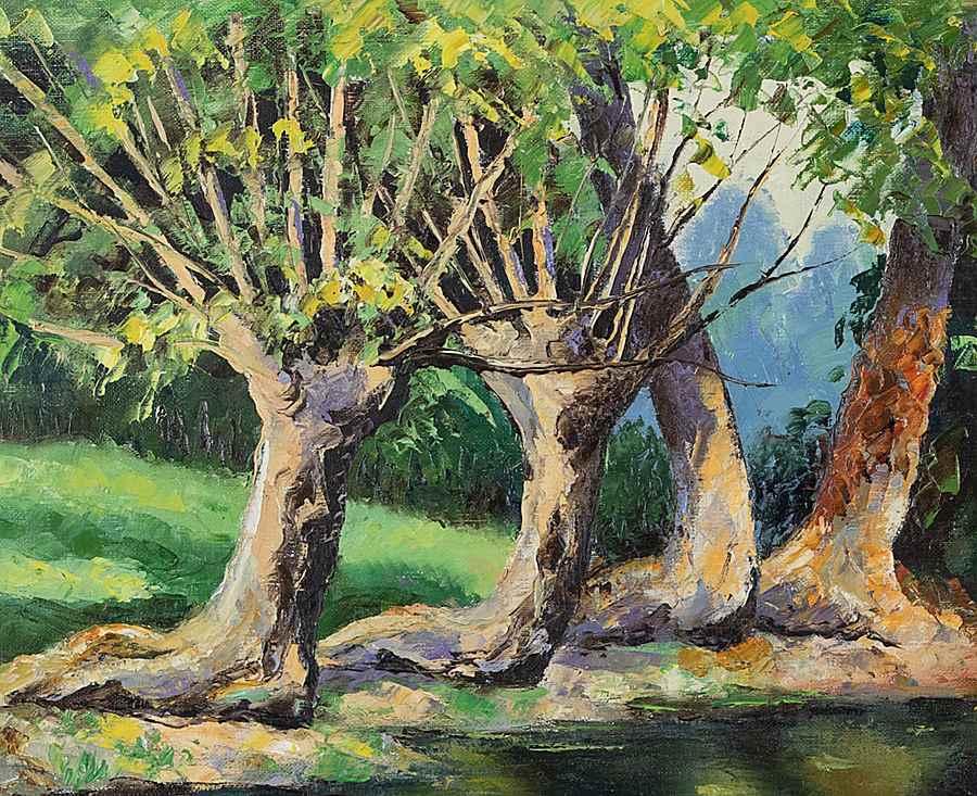 La Mare et les Vieux Saules - Paulémile Pissarro (1884 - 1972)