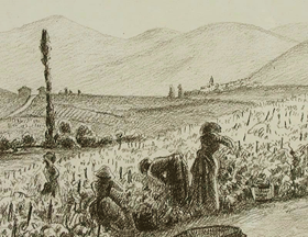 Ludovic-Rodo Pissarro - Harvesting