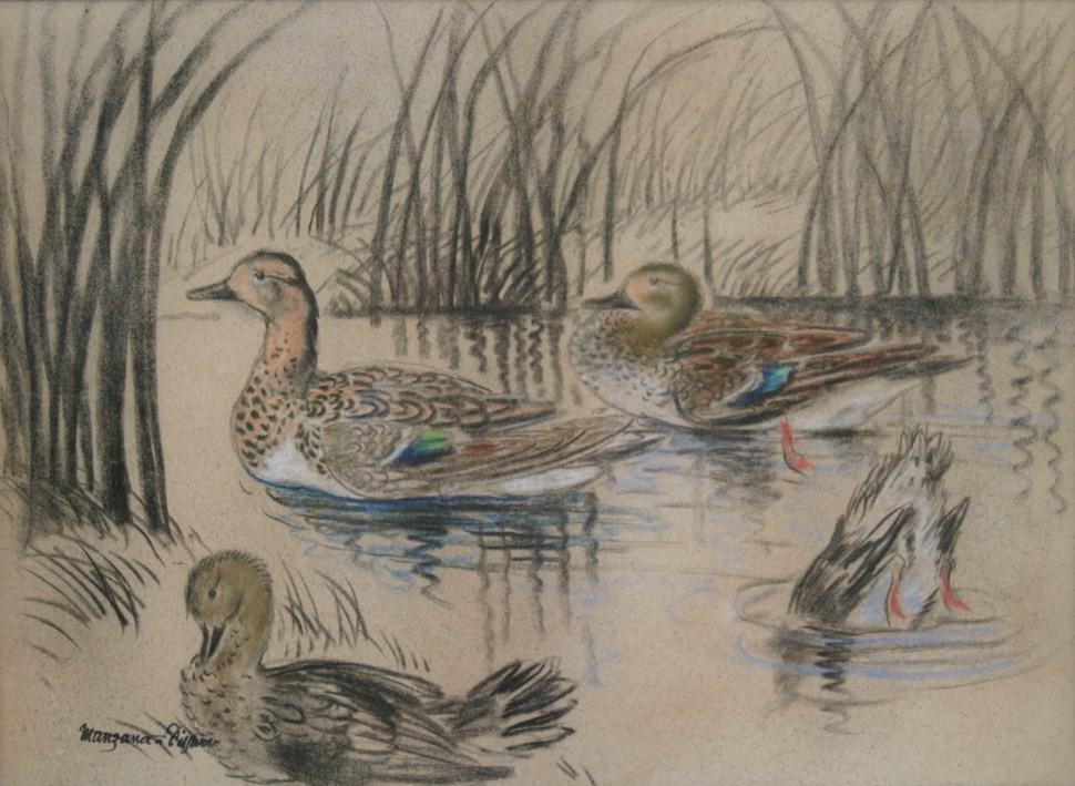 Wild Ducks - Georges Manzana Pissarro (1871 - 1961)