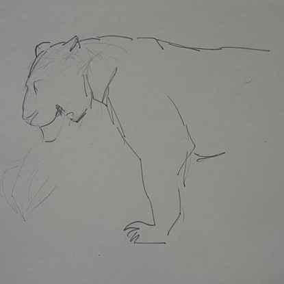 Lioness in Profile - Orovida Pissarro (1893 - 1968)
