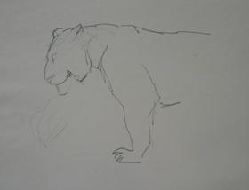Orovida Pissarro - Lioness in Profile