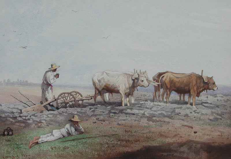 Laboureur/Nodolie - Franciszek Tepa (1829 - 1889)