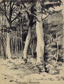 PaulémilePissarro - Vue d'une Forêt