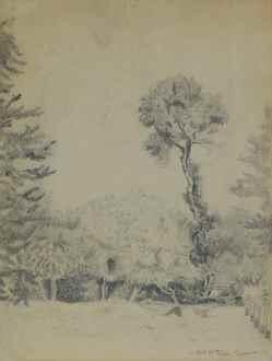FélixPissarro - Landscape with Trees