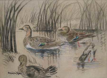 Georges ManzanaPissarro - Wild Ducks