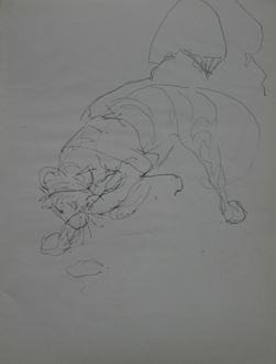 OrovidaPissarro - Study of Crouching Tiger
