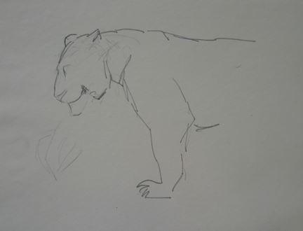 OrovidaPissarro - Lioness in Profile